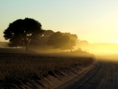 Amanecer en el Kalahari