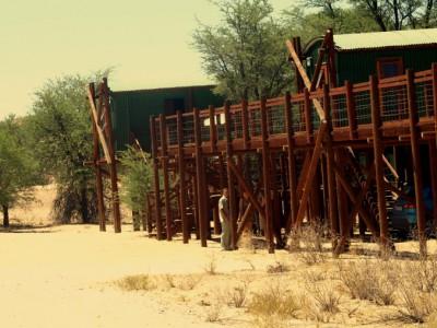 Campamento del Kalahar