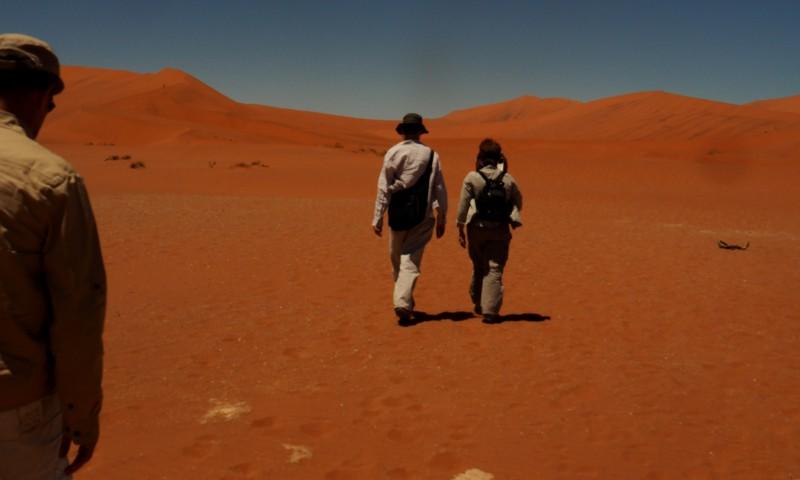 Mis amigos en el Desierto