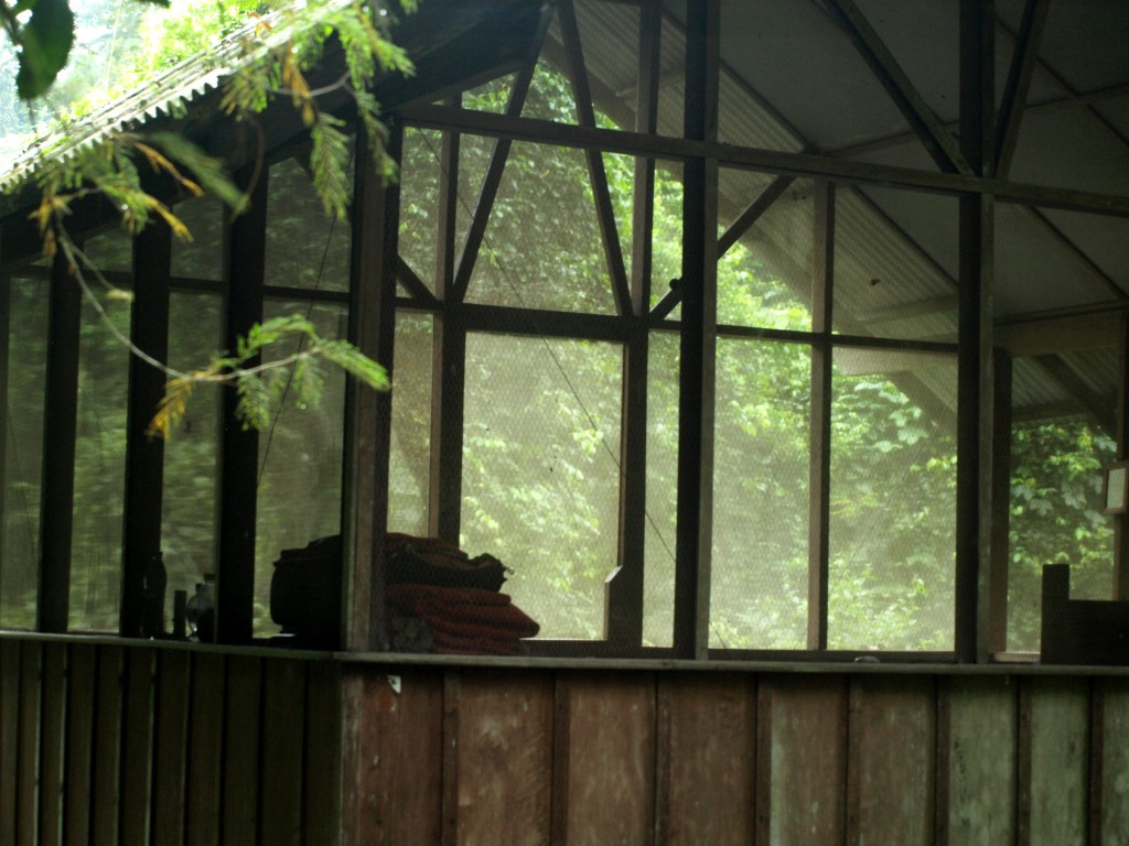 Nuestra cabaña en la reserva