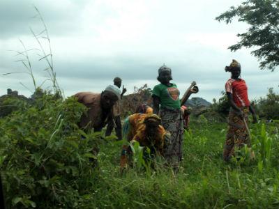 Mujeres trabajando en la tierra