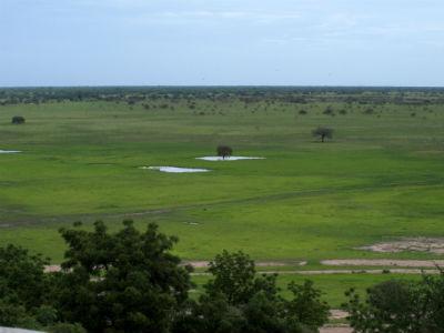 Waza el parque nacional de Camerún