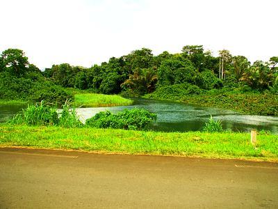 El peligroso río Tiburon