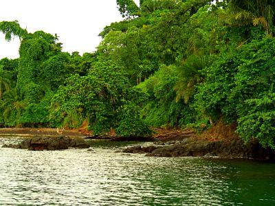 La costa de Bioko