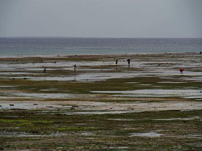 La playa de Pemba