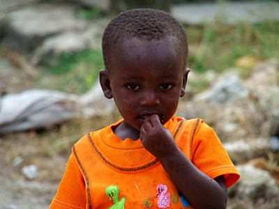 Nene en Mozambique