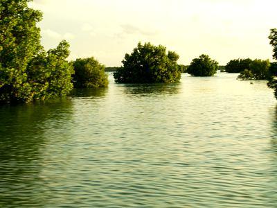 La isla de Ibo