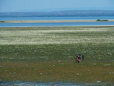 La isla de Ibo con la marea baja