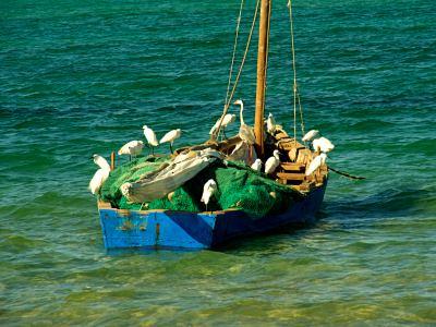 Un barco en Vianculos