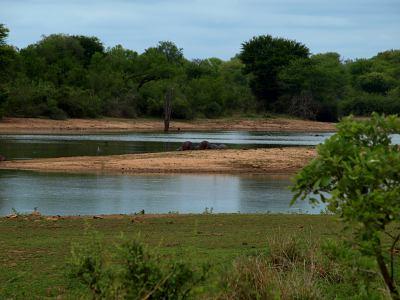 El Parque Nacional del Kruger