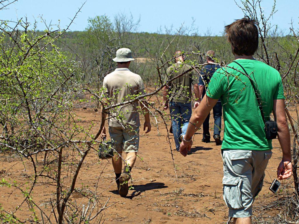 Rangers en el Kruger