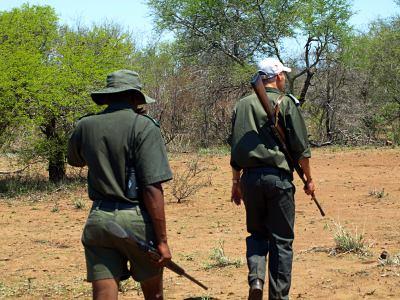 Dos rangers de ruta por la selva
