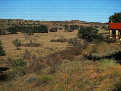 Una tienda del Kalahari en mitad de la selva
