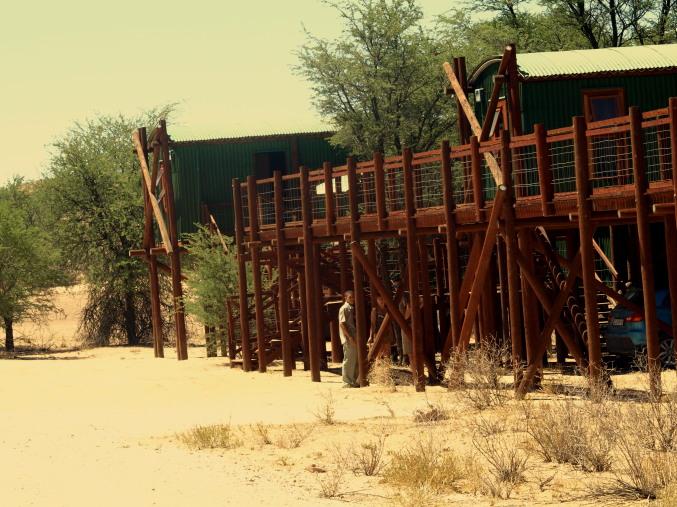 Campamentos del Kalahari