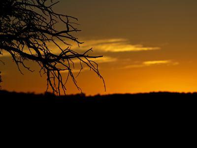 Atardecer en el Kalahari