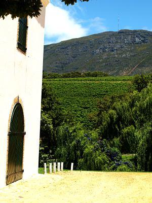 Bodegas y viñedos en los alrededores de Ciudad del Cabo