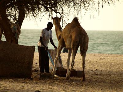 Hombre en una playa de Banjul