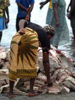Una mujer ante una montaña de pescado en Zinguinchor