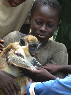 Un niño jugando con un mono en Casamance