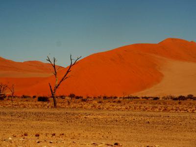 El corazón del Desierto de Namib