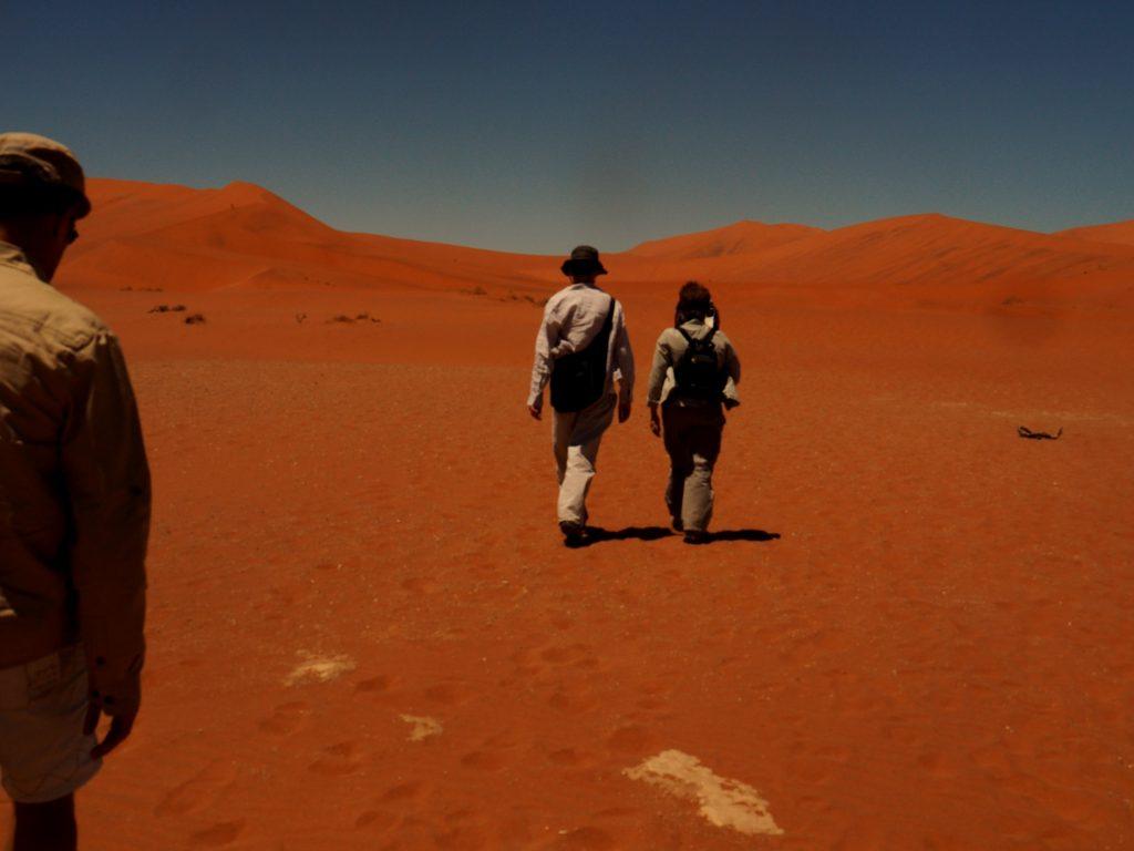 Mis amigos en el Desierto de Namib