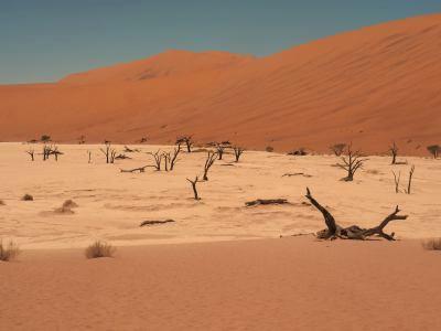 Otro lago de sal en el Desierto de Namib