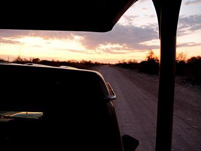 Safari de madrugada en Ethosa