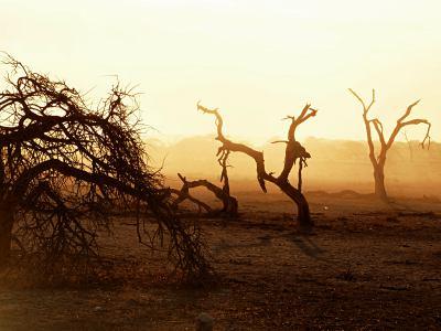 Amanecer en Ethosa