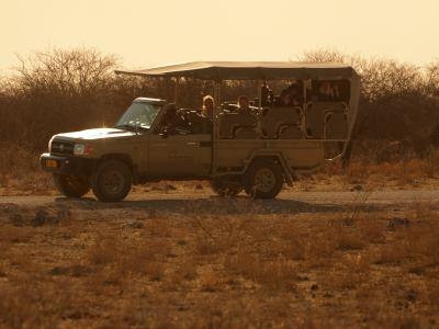 De safari por Ethosa