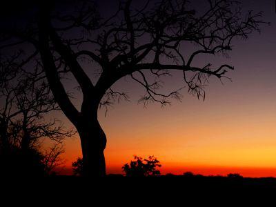Parque Nacional de Ethosa