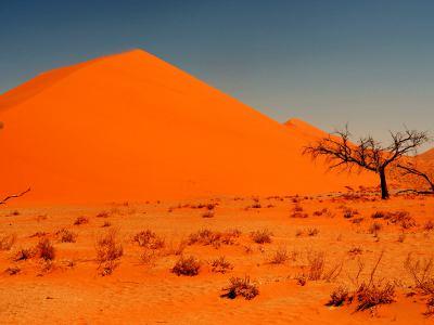 Increíble Desierto de Namib