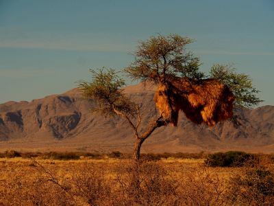 A las puertas del Desierto de Namib