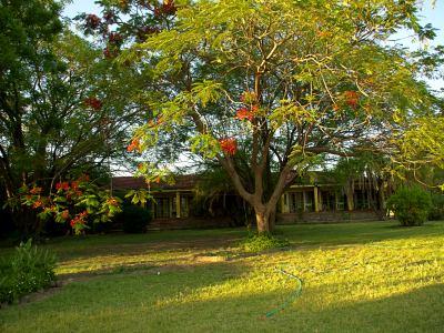 Sedia Hotel de Maun