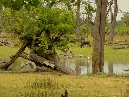 La laguna donde esta nuestro primer campamento