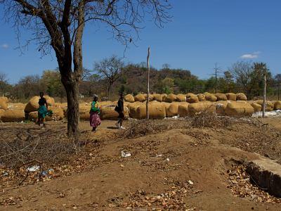 Algodón en Gweru