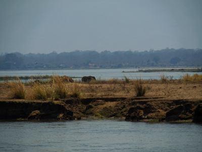 Los brazos del Zambeze