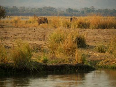 Interior de Mana Pools
