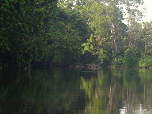 Una barca nos lleva al territorio de los pigmeos de Camerún