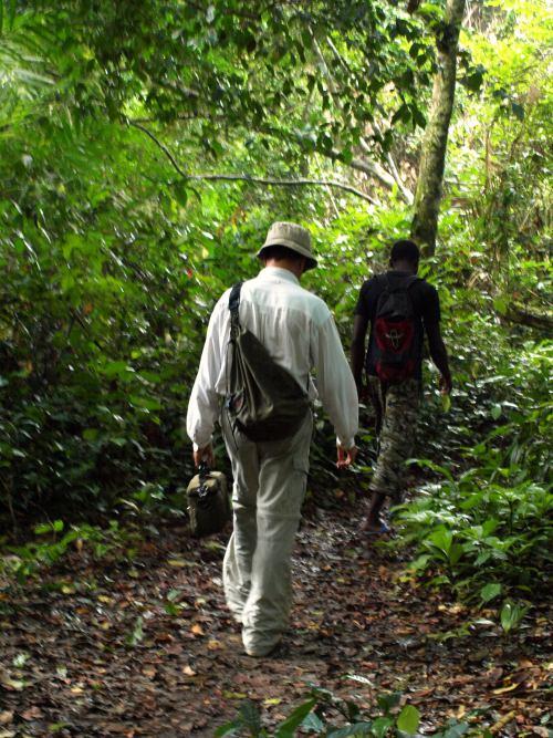 Buscando a los pigmeos de Camerún
