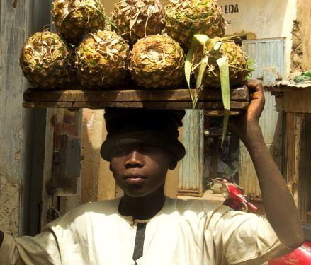 Un niño vende piñas en Kano