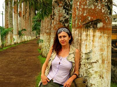 Camino de palmeras en Sampaka