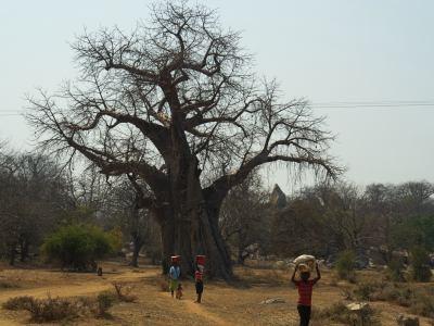 Gente por los caminos de Zimbabue