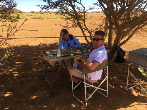 Bajo un acacia en el desierto camino de las Pirámides de Meroe en Sudán