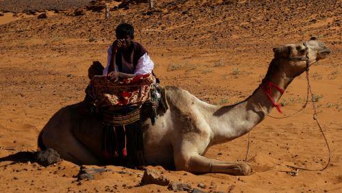 Paisanaje mirándonos en el desierto de Sudán